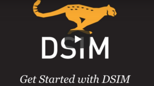 Get Started with DSIM