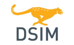 DSIM User's Manual