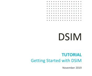 Getting Started with DSIM